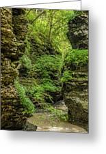 Emerald Gorge Greeting Card