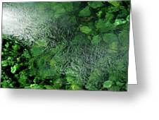 Emeralds Under Ice Greeting Card