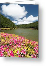 Empadadas Lakes II Greeting Card