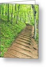 Empire Bluffs Trail Steps In Michigan Greeting Card