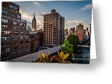 Empire State Building Sunset Rooftop Garden Greeting Card