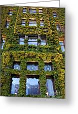 Empress Hotel Windows Greeting Card