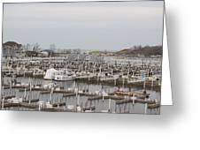Empty Harbor Greeting Card