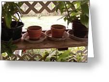 Empty Pots Greeting Card
