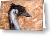 Emu Profile Greeting Card