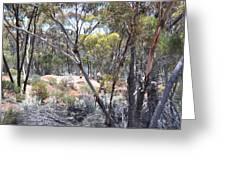 Emus Greeting Card