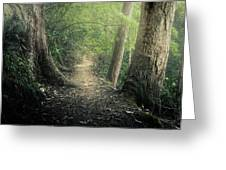 Enchanted Forrest Greeting Card