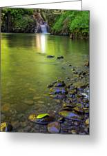 Enchanted Gorge Reflection Greeting Card