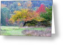 Enchanted Park Greeting Card by Lori Seaman
