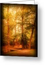 Enchanted Path 2 - Allaire State Park Greeting Card