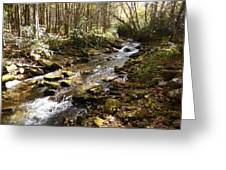 Enchanted Stream - October 2015 Greeting Card