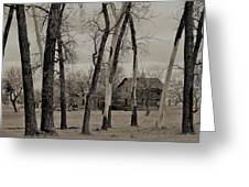 Home In The Wood Greeting Card