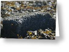 Encrusted Rock Greeting Card