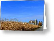 End Of Season Corn 2015 Greeting Card