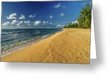 Endless Beach Greeting Card