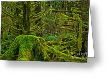 Endless Green Greeting Card