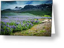 Endless Meadows Greeting Card