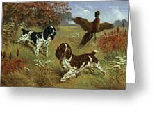 Energetic English Springer Spaniels Greeting Card by Walter A. Weber