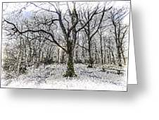 English Forest Snow Art Greeting Card