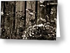 English Garden Noir Greeting Card