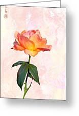 English Garden Rose Greeting Card