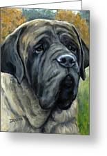 English Mastiff Black Face Greeting Card by Dottie Dracos