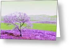 Enhanced Lake Henshaw Greeting Card