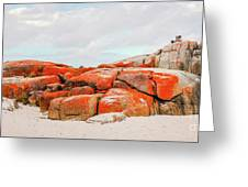 Enjoying The Moment Bay Of Fires Greeting Card