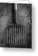 Ensilage Fork Up On Plywood In Bw 66 Greeting Card