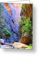 Entrance To The Narrows Greeting Card