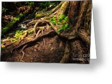 Entwined Roots Greeting Card