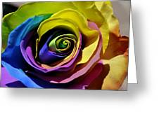 Equality Rose Greeting Card