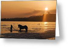 Equine Beach Time Greeting Card