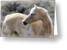 Equine Golden Glow Greeting Card