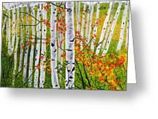 Erin's Birch Trees Greeting Card