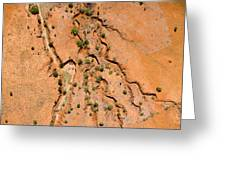 Erosion From Agricultural Use Greeting Card