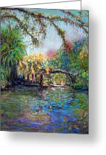 Estero River At Koreshan Greeting Card