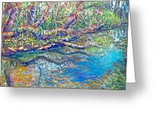 Estero River West Greeting Card