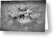 Etched In Stone 6 Greeting Card
