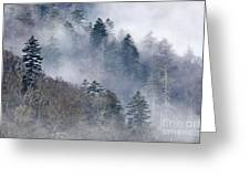 Ethereal Forest - D008248 Greeting Card