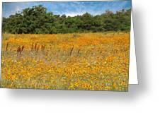 Eufaula Meadow Greeting Card