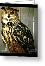 Eurasian Eagle-owl With Oil Painting Effect Greeting Card