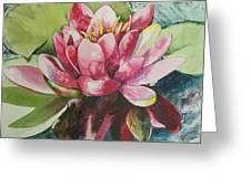 Eureka Springs Lily Greeting Card