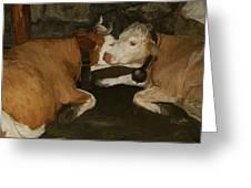 European Cows Greeting Card