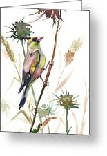 European Goldfinch In The Field Greeting Card