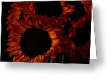 Even In The Darkness Greeting Card by Beauty For God