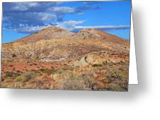 Evening Colors Of The Desert Greeting Card