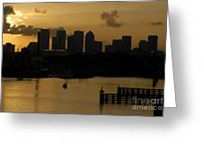 Evening In Tampa Greeting Card