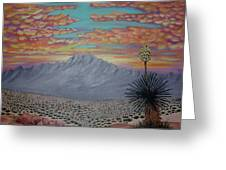 Evening In The Desert Greeting Card