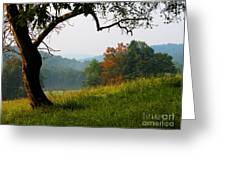 Evening In The Pasture Greeting Card